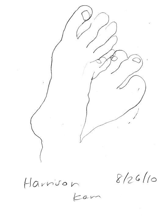 Blind Contour Line Drawing Exercises : Blind contour drawings fragile disability pinterest