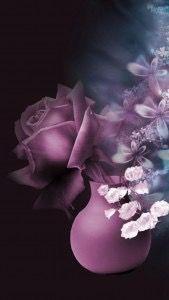 قصة كتبتها فتاه عن اخوها قصه المرحوم نايف كتبتها بس عشان الشباب ياخذون Purple Flowers Wallpaper Flower Iphone Wallpaper Iphone Wallpaper Violet