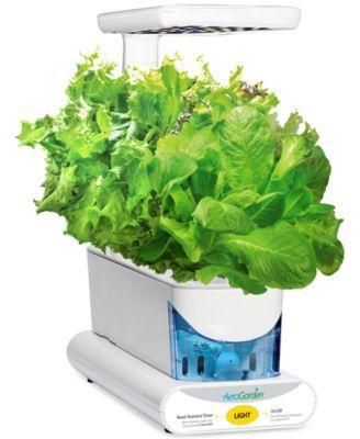 Aerogarden Heirloom Salad Green 3 Pod Refill Kit Gifts 400 x 300