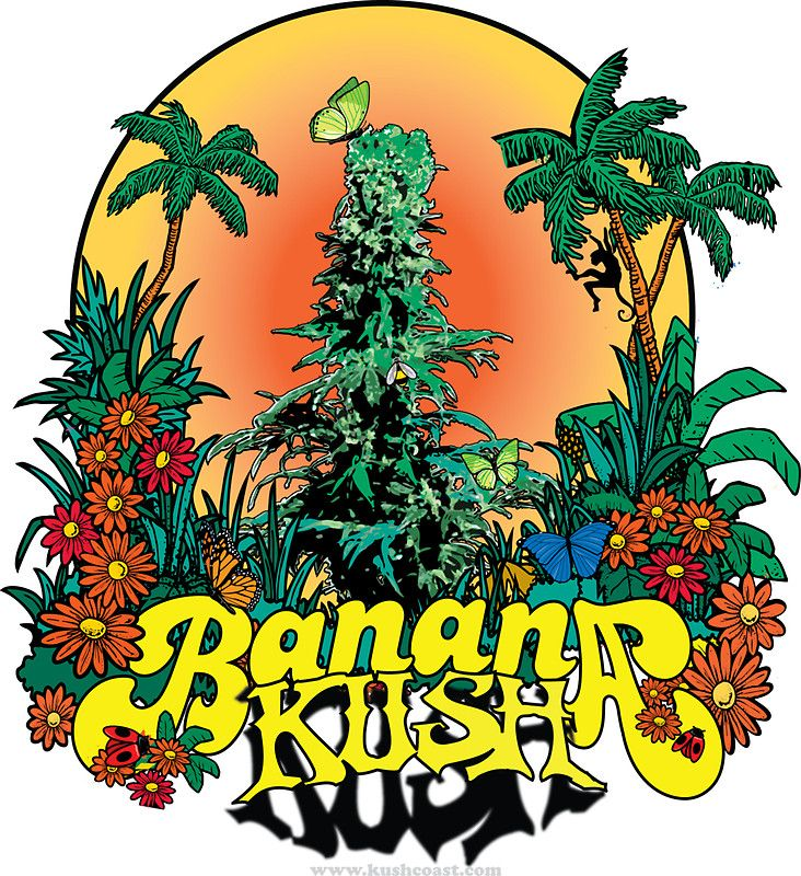 Lyric ganja farmer lyrics : Banana Kush | stickers | Pinterest | Cannabis