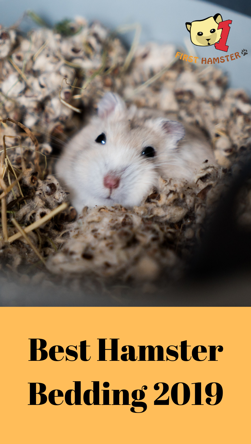 4 Best Hamster Bedding/Substrate Options (An Owner's Opinion)