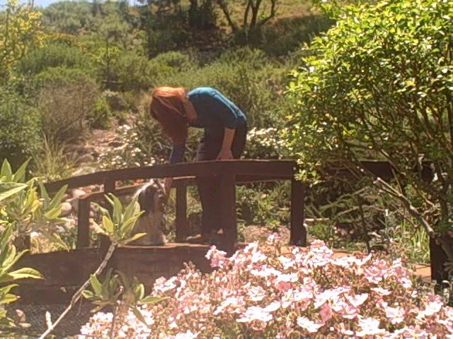 A bridge in this hilly landscape design turned into a fine place to pat a puppy