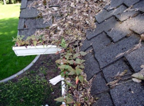 Proper And Timely Cleanings Of Roofs And Gutters Can Help Prolong The Life Of Your Roof Cleaning Gutters Gutter Maintenance Backyard Pergola
