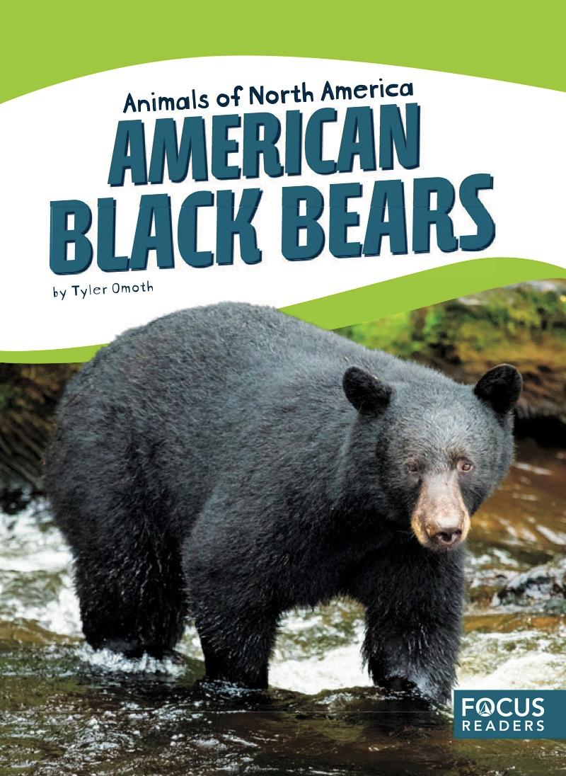 Epic Books For Kids American Black Bear Black Bear Popular Kids Books