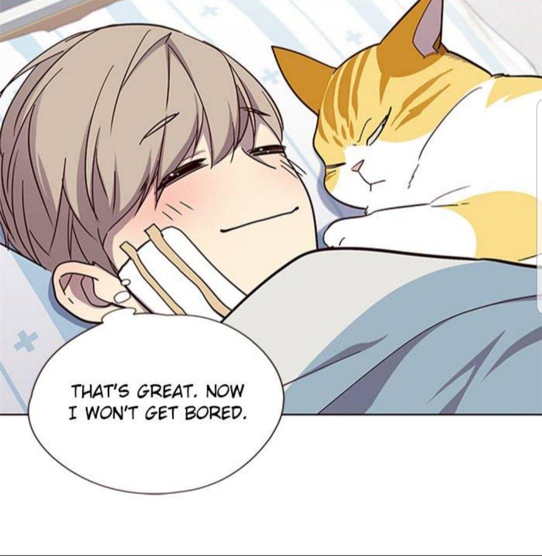 Eleceed So Cute Webtoon Webtoon Comics Manga Collection