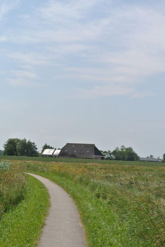 Landerijen, omgeving Zandeweer