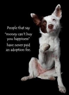 Pawsitively Frugal