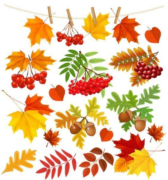 Декупаж. Секреты Мастеров | Осенние листья, Листья ...