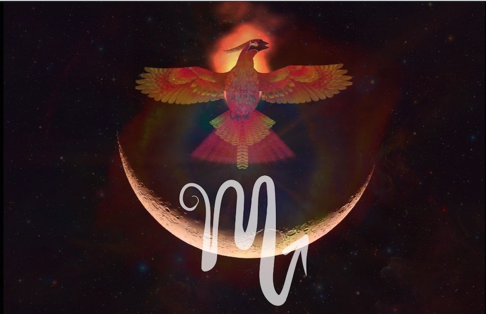 Intuitive Astrology: October New Moon 2019 #newmoonritual The Scorpio New Moon falls on October 27-28th and brings strong waves of energy that we will feel deeply to our core. The cosmic skies are stirring, there is change in the air, and it seems that this New Moon may awaken us to some new truths. Something may catch us off guard or some … #newmoonritual