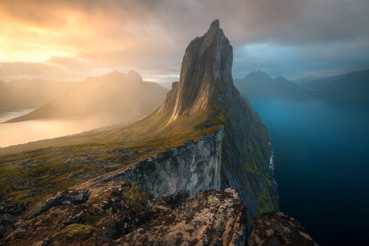 Incredible Winners Of The Bigpicture Natural World Photography Competition World Photography Photography Competitions Natural World