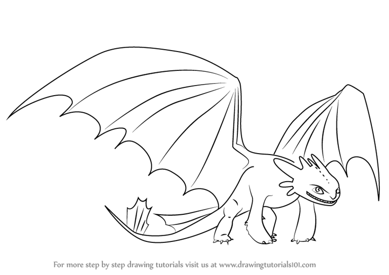 Learn How To Draw Night Fury From How To Train Your Dragon How To Train Your Dragon Step By In 2020 How Train Your Dragon How To Train Your Dragon Toothless Drawing