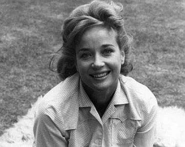 sylvia syms deathsylvia syms actress, sylvia syms singer, sylvia syms imdb, sylvia syms husband, sylvia syms biography, sylvia syms death, sylvia syms obituary, sylvia syms photo gallery, sylvia syms daughter, sylvia syms images, sylvia syms alan rickman, sylvia syms net worth, sylvia syms doctor who, sylvia syms movies and tv shows, sylvia syms today, sylvia syms agent, sylvia syms tv shows, sylvia syms carry on films, sylvia syms dancing chandelier, sylvia syms new tricks