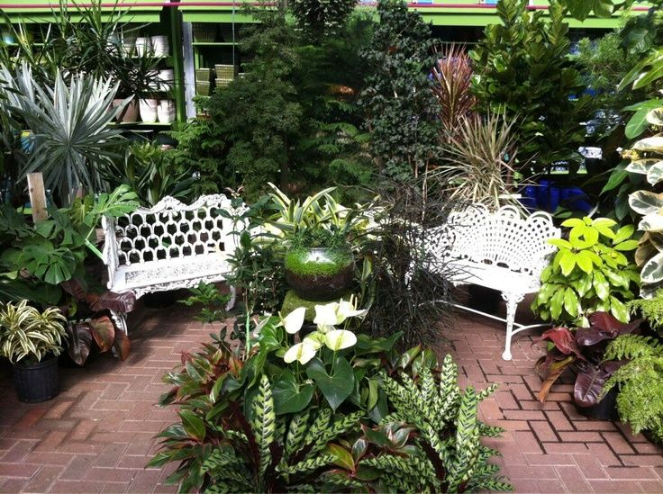 cozy set up in Gethsemane Garden Center's greenhouse using many ...