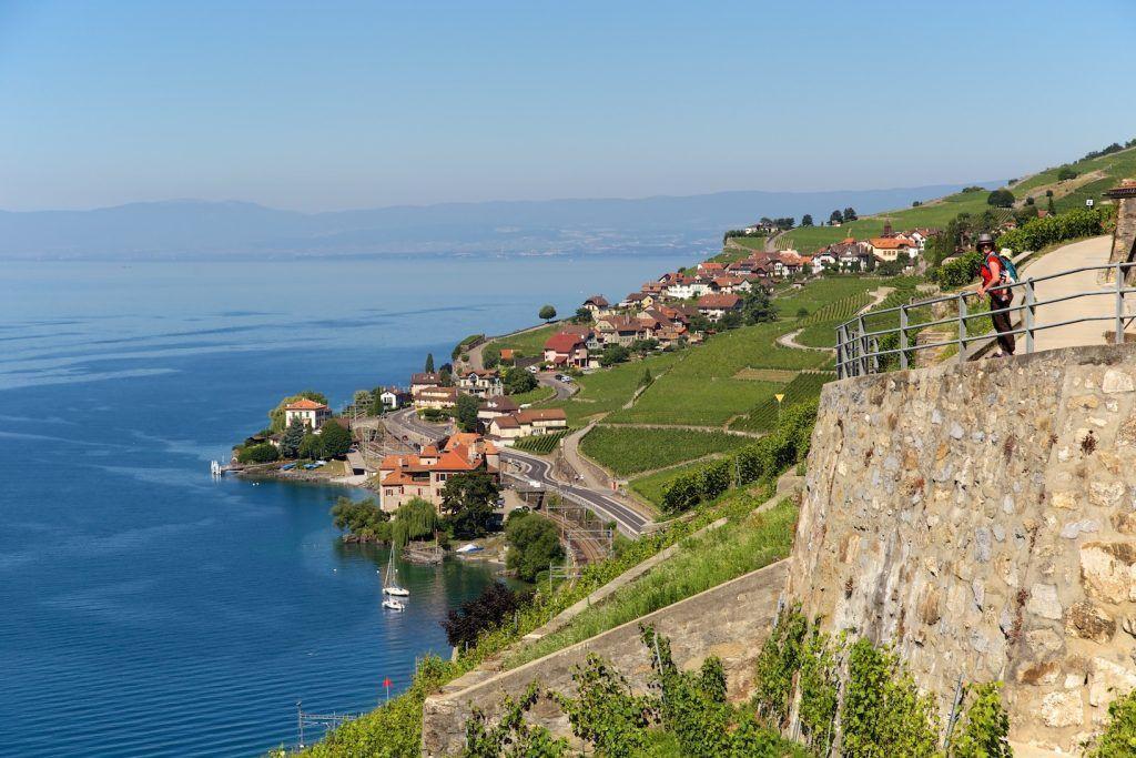 Randonnee Dans Le Lavaux Autour Du Lac Leman En Suisse Lac Leman Voyage Suisse Lac