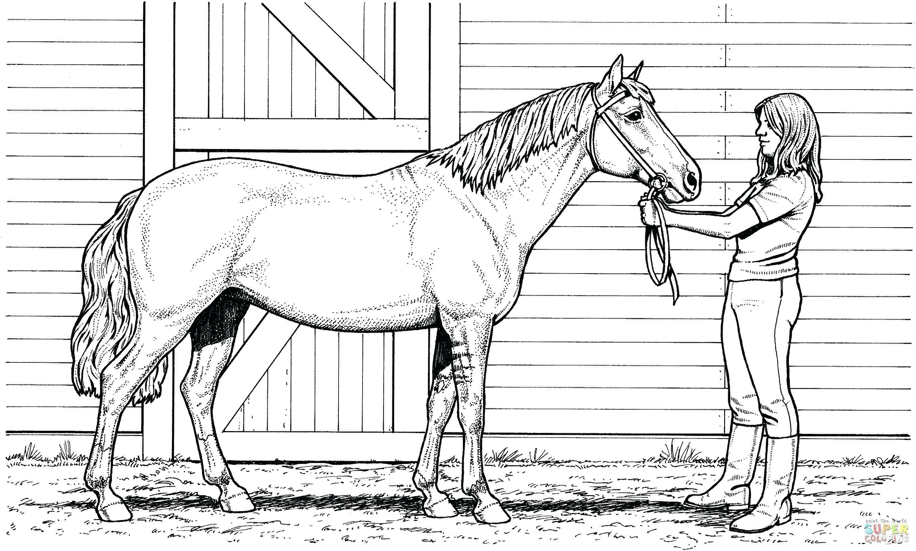 Printable Horse Coloring Pages New Race Horse Coloring Pages Printable Micronsheet In 2020 Horse Coloring Pages Horse Coloring Animal Coloring Pages