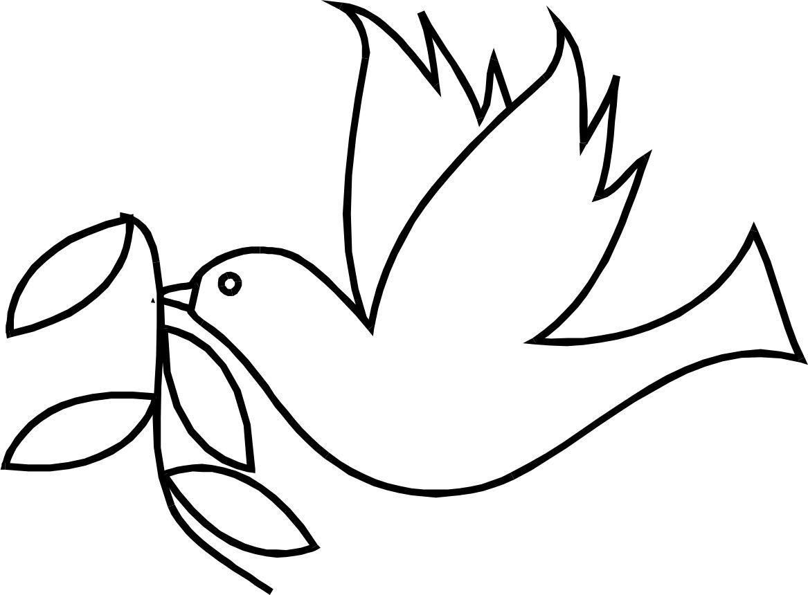 vogel zeichnung cartoon gezeichnet taube niedlichen