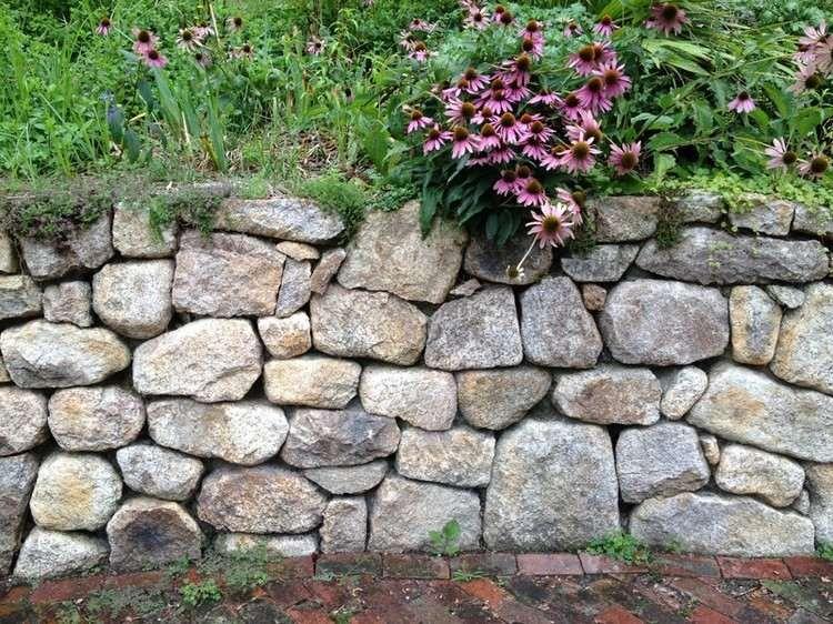 Trockenmauer mit Blumen bepflanzen  Garten  Friesenwall Landschaftsbau und Trockenmauer