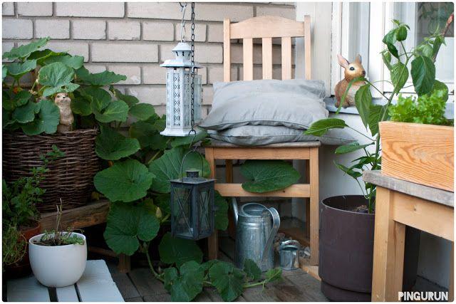My Balcony Garden  www.pingurun.com
