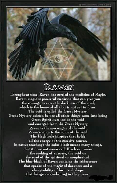 Raven Symbolic Symbol Of Darkness Spirit Pinterest Ravens