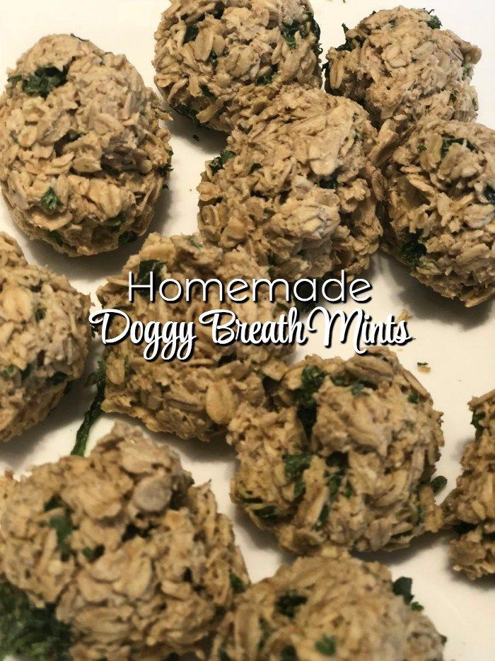 Vegan Grain Free Sweet Potato Cookies For Dogs Recipe Dog