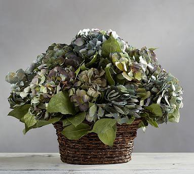 Live Small Basket Hydrangea Arrangement, Blue/Green