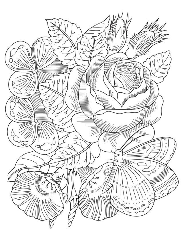 Michigan State University Libraries Coloring Sheet Color