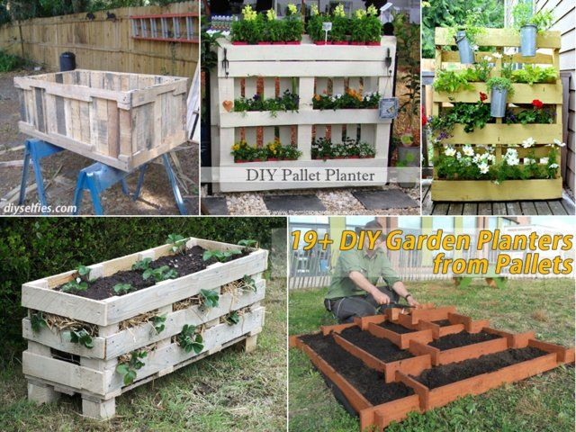 upcycle wooden pallets into container gardens