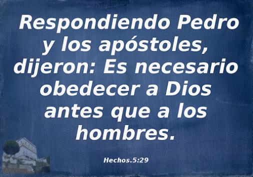 #obediencia