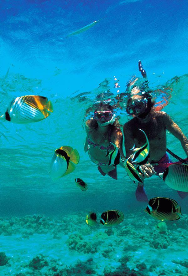Ko Olina Beach Villas Resort Snorkeling