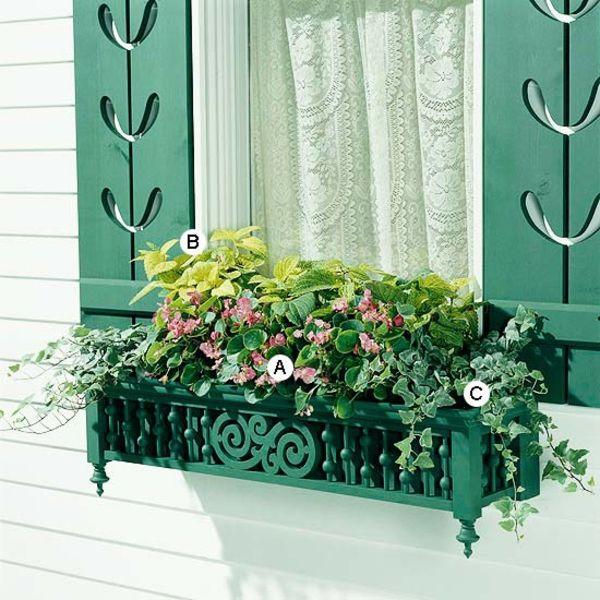 Ideen Fur Fenster Blumenkasten Originelle Vorstellungen Flowers