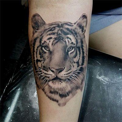 Grey Wash Tattoo Ink Kit Intenze Tattoo Ink Ink Tattoo Tattoo Sleeve Designs Full Sleeve Tattoos