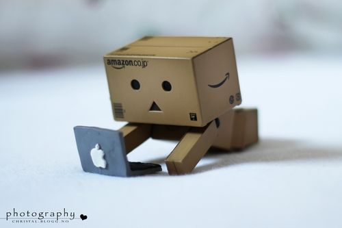 Love Apple Danbo Amazon Box Cute Box