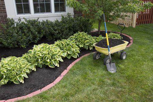 lanscape ideas Fall Gardening Tips loves theses shrubs...whatever ...