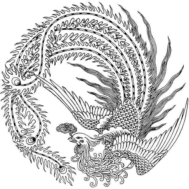 Chinese Phoenix | Wings and Feathers | Pinterest | Fénix ...