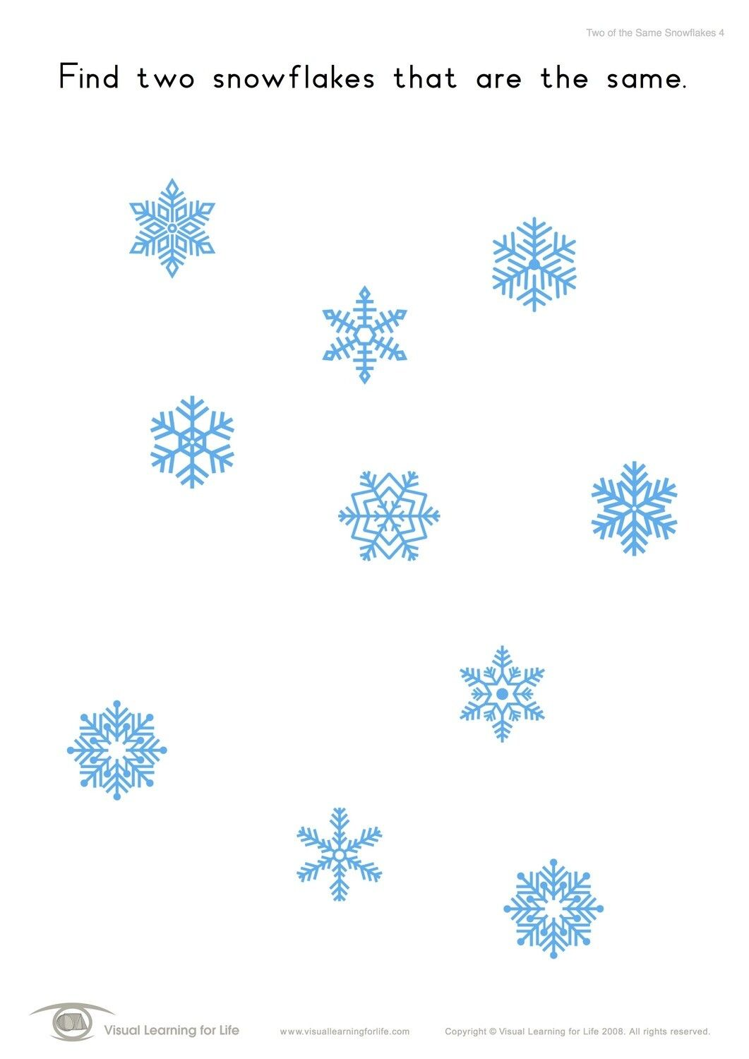 In The Two Of The Same Snowflakes Worksheets The