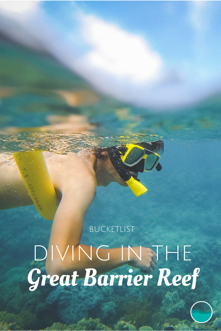 Diving in the Great Barrier Reef should be on everybody's bucket list!