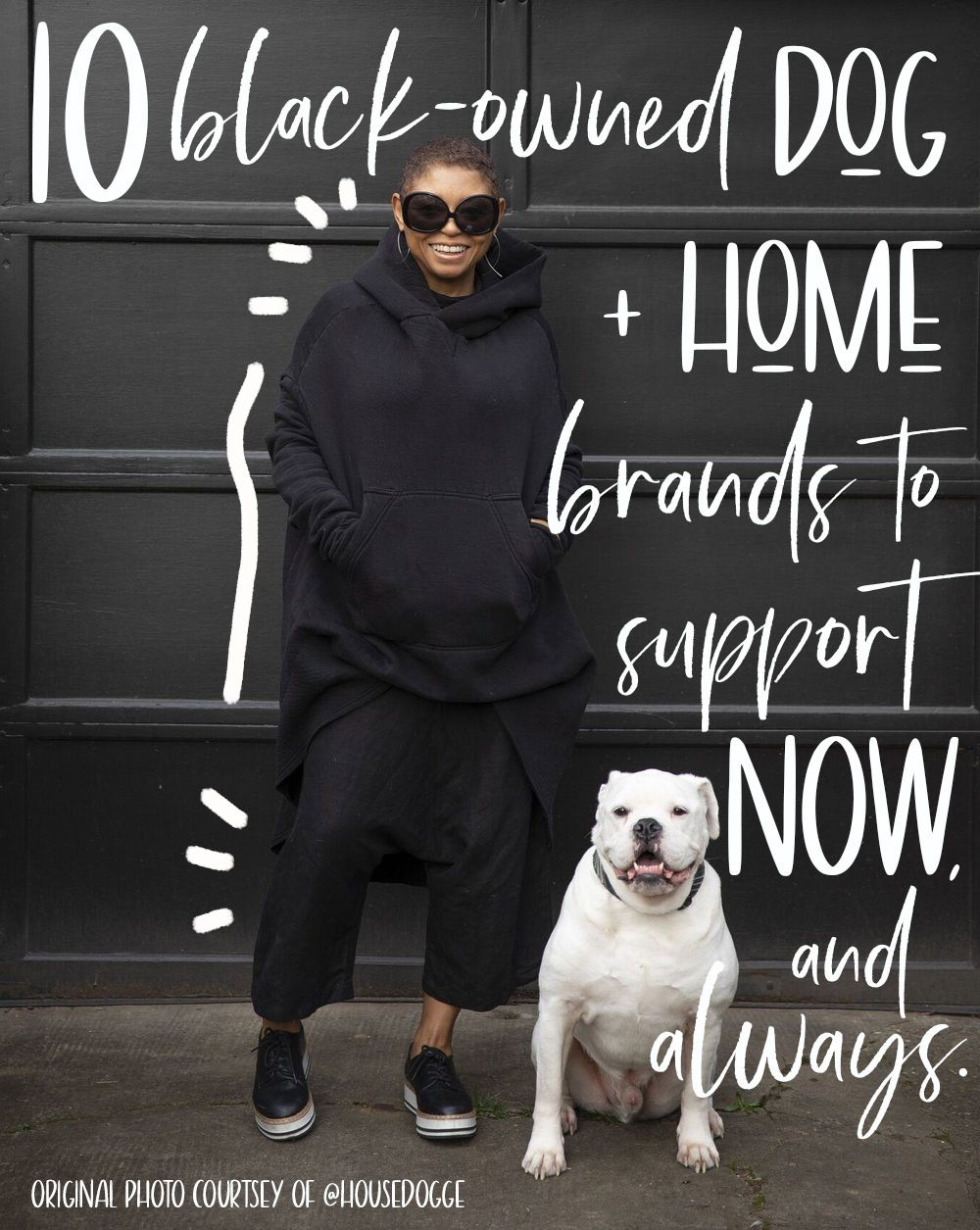 10 Black Owned Dog Brands To Support Now And Always In 2020 Dog Branding Dogs Pet Businesses