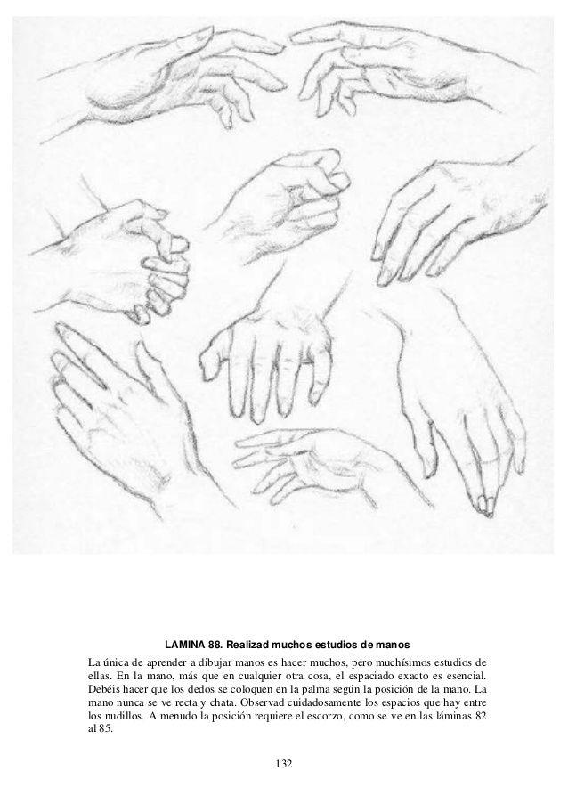 Andrew loomis dibujo de cabeza y manos (español) | Andrew loomis ...