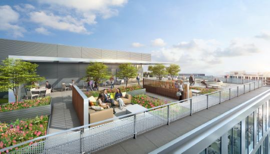 Rooftop Terraces At Office Buildings Google Search Terrace Outdoor Landscape Design Rooftop Terrace