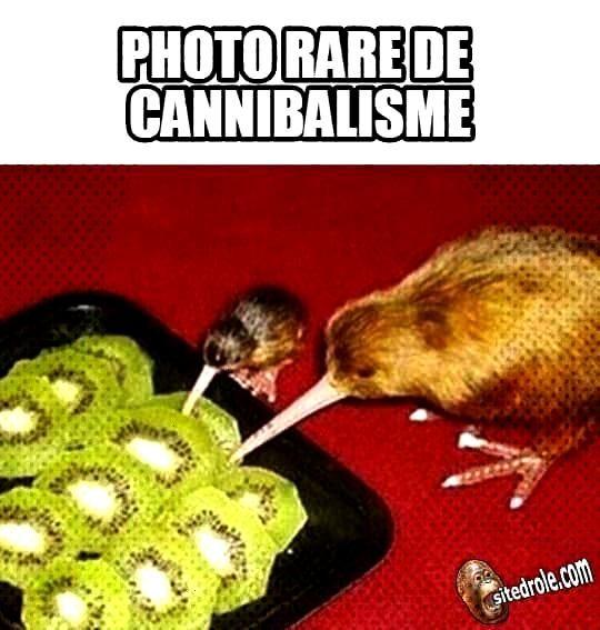 Kannibalismus...   - BOUFFE  ❤ HUMOUR, CITATIONS & CADEAUX