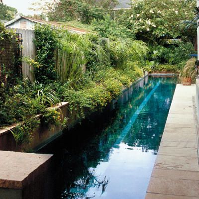 Urban Pool Retreat This lap pool is bordered with luscious greenery making it resemble a river. This is exactly what I want. To walk or swim. I love the dark color too.