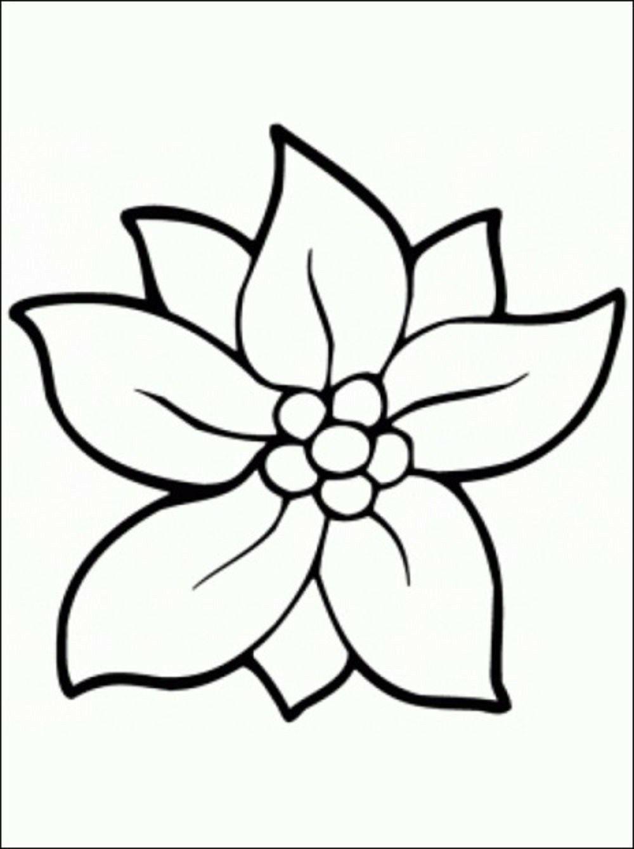 Pin Von Clara Lizarraga Auf Craft Malvorlagen Blumen Kostenlose Ausmalbilder Malvorlagen