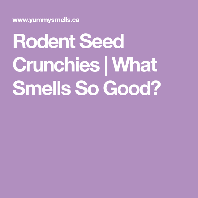 Rodent Seed Crunchies | What Smells So Good?