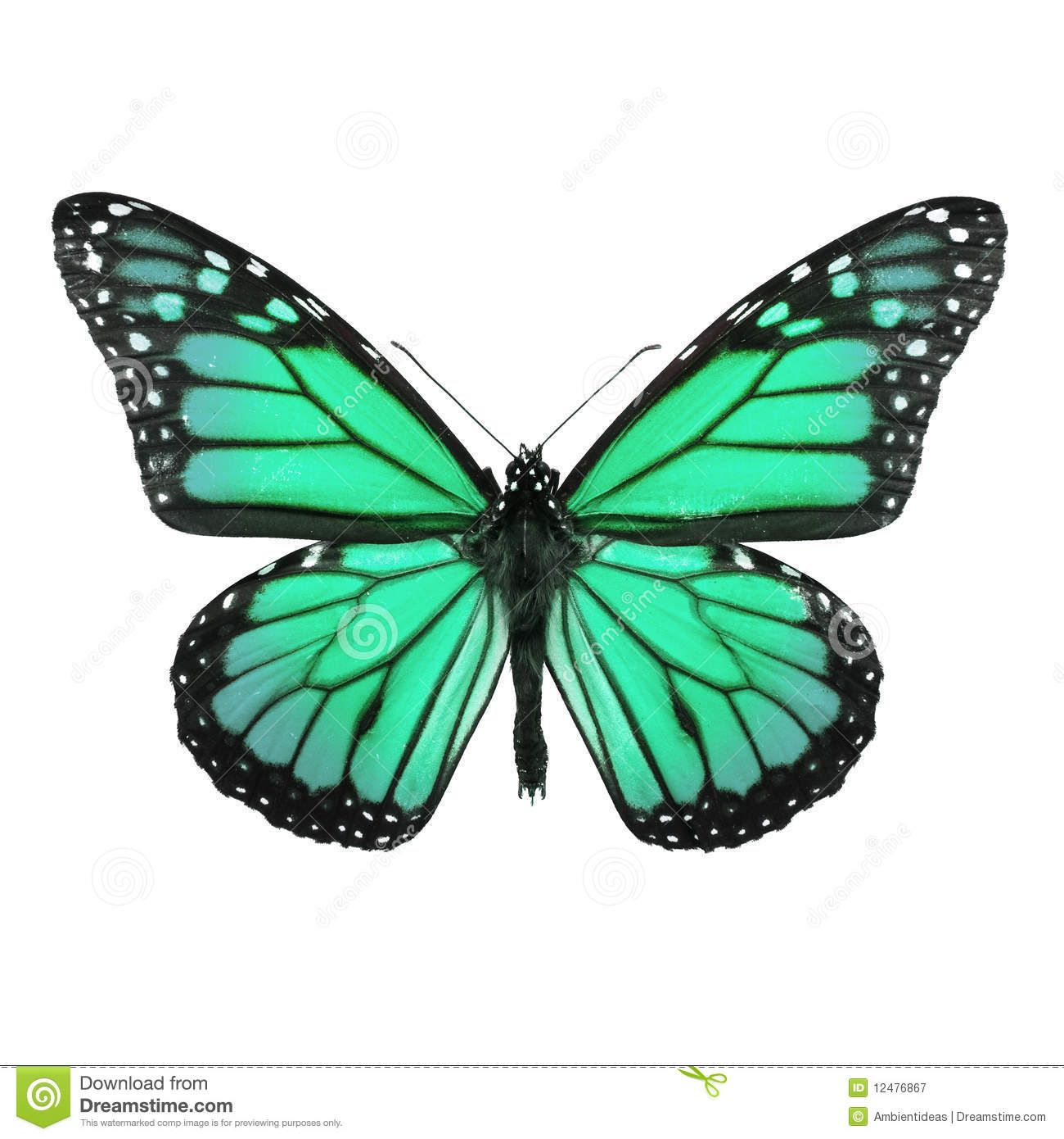 Monarch Butterfly Tattoo Butterfly Painting Monarch Butterfly [ 1390 x 1300 Pixel ]