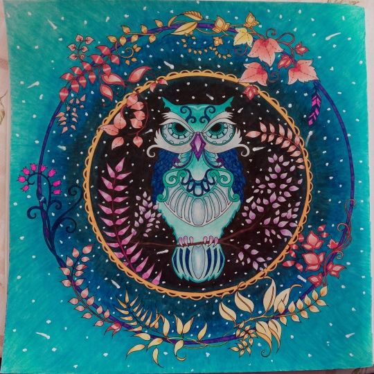 Owl Enchanted Forest Coloring Book Secret Garden Adult Purple Beautiful Colorful Completed Work Picture Inspiration