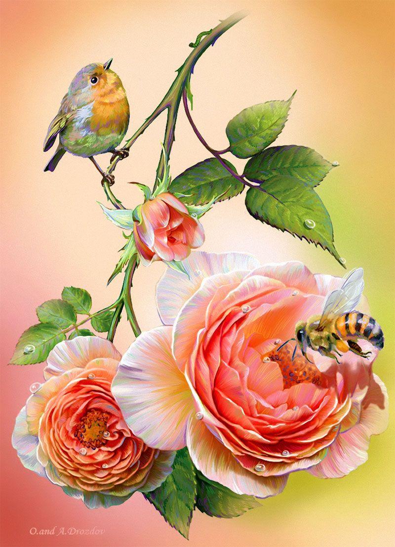 Днем рождения, открытки птицы и цветы