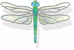 Dragonfly Stain Glass Patterns Free Patterns Dragonfly Stained