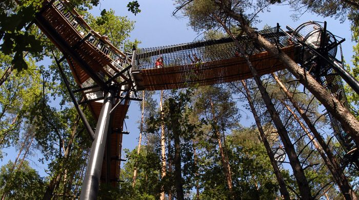 Treetop Trail Fischbach Day Trips Germany Travel Trip