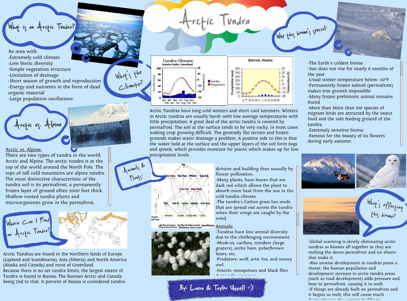 Arctic Tundra Biome School Project | Biome -- Arctic Tundra ...