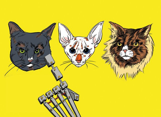 Hey, Robot: Which Cat Is Cuter? - NYTimes.com
